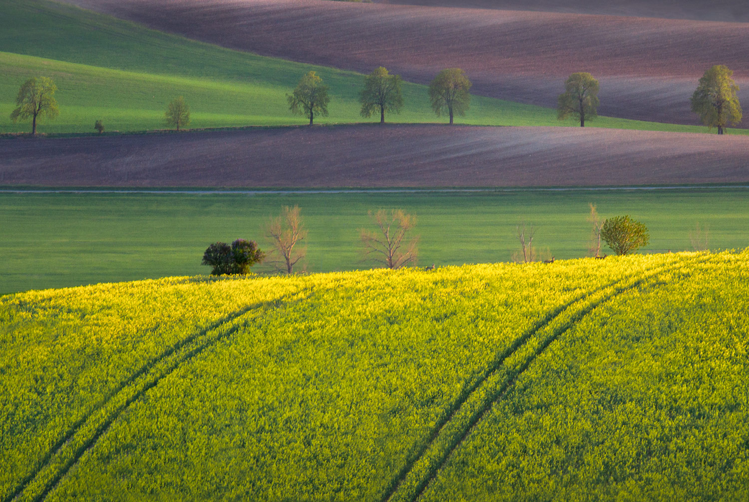 Beautiful Photos Of Moravia Czech Republic Countryside