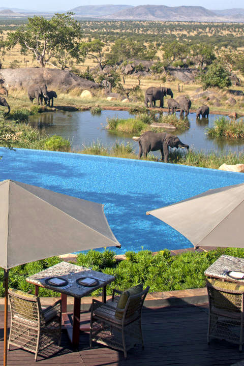 You can cool off and observe the local wildlife all at the same time in the Four Seasons Safari Lodge's free-form infinity pool located right above a watering hole frequented by elephants.
