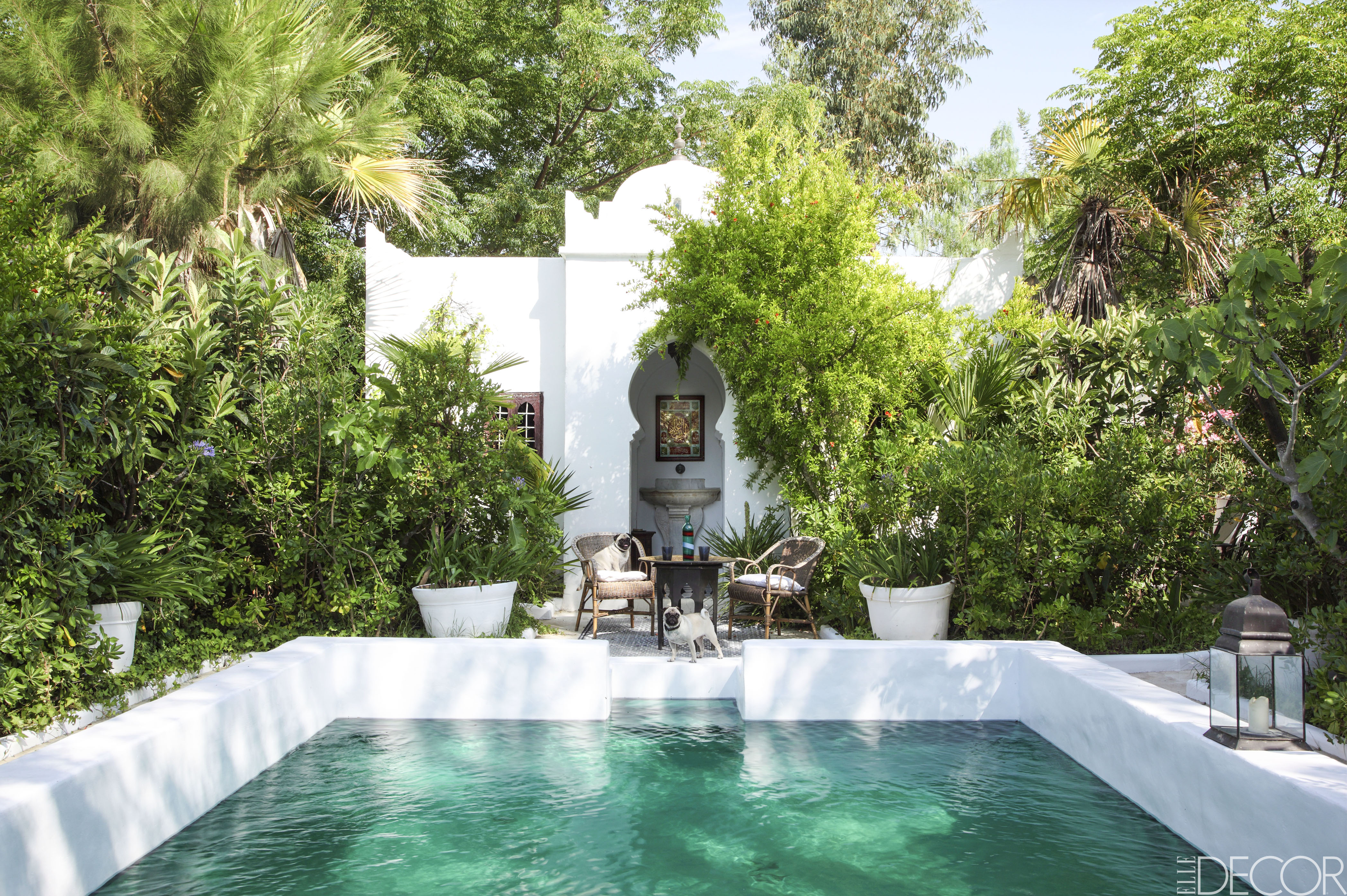 8 Pool Designs For Backyard Landscaping