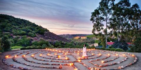 Cal a vie is the luxury wellness retreat celebrities love for Wellness retreat san diego