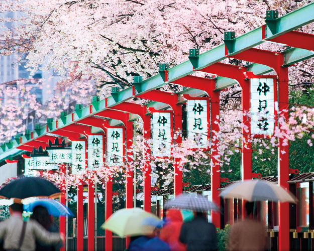 Japan Tours With Airfare